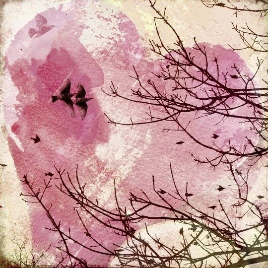 """Pink Flight"" by Pamela Viola, via @greatbigcanvas"