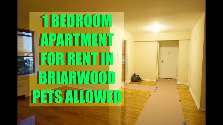 Pet friendly, 1 bedroom apartment for rent in Briarwood, Queens, NY