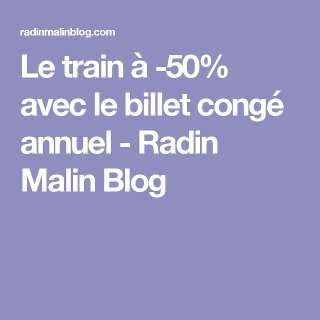 Le train à -50% avec le billet congé annuel - Radin Malin Blog