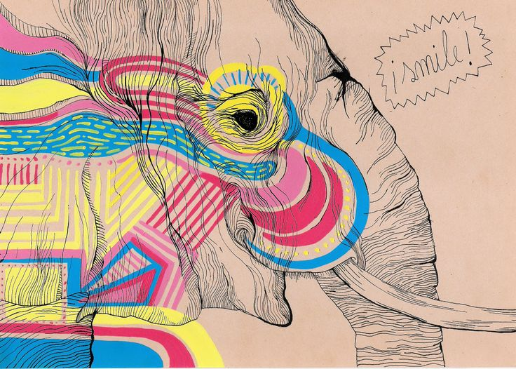 elephant and colors illustration