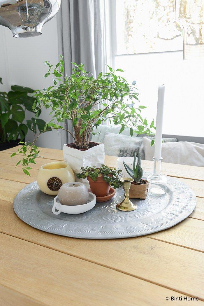 17 beste idee n over venster planten op pinterest appartement planten kamerplanten en planten - Muur decoratie eetkamer ...