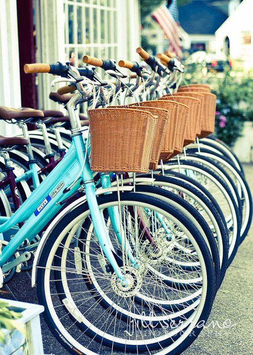 baskets & bikes