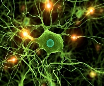 Amyotrophic Lateral Sclerosis #ALS