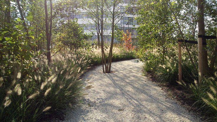 Novo_Nordisk_Nature_Park-SLA_Architects-07 « Landscape Architecture Works | Landezine