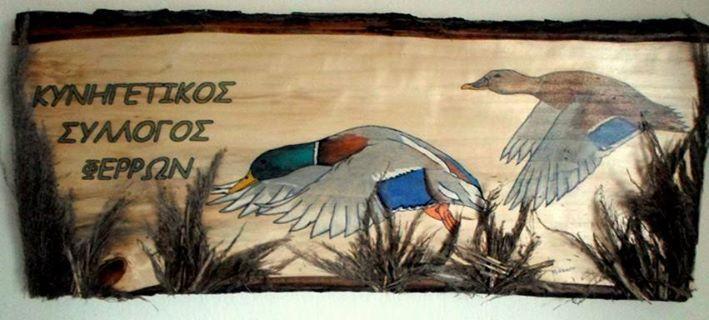 Ζευγάρι πάπιες  Κυνηγετικός Σύλλογος Φερρών/ Έβρος Υδρόβια
