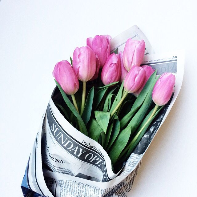 tulips all wrapped up
