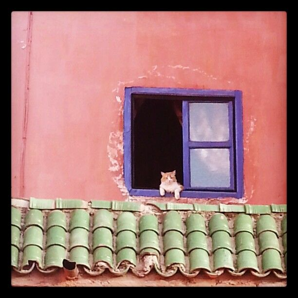 moroccan window