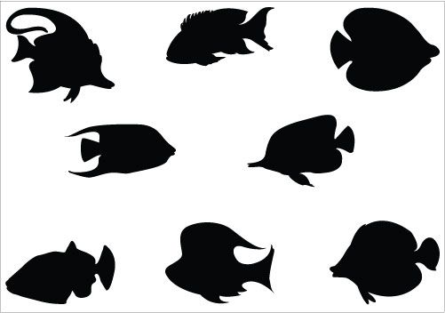 Awesome fish silhouette vectors added here for fish graphic design, you can design aquariums, under water designs, sea vector graphics etc.