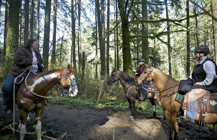 Sunbreaks bring out Clark County horse riders