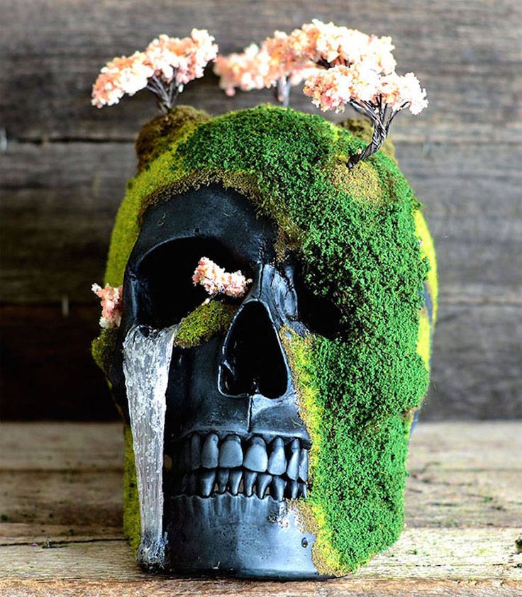 2199 best odd planters garden pots images on pinterest for Unusual bonsai creations