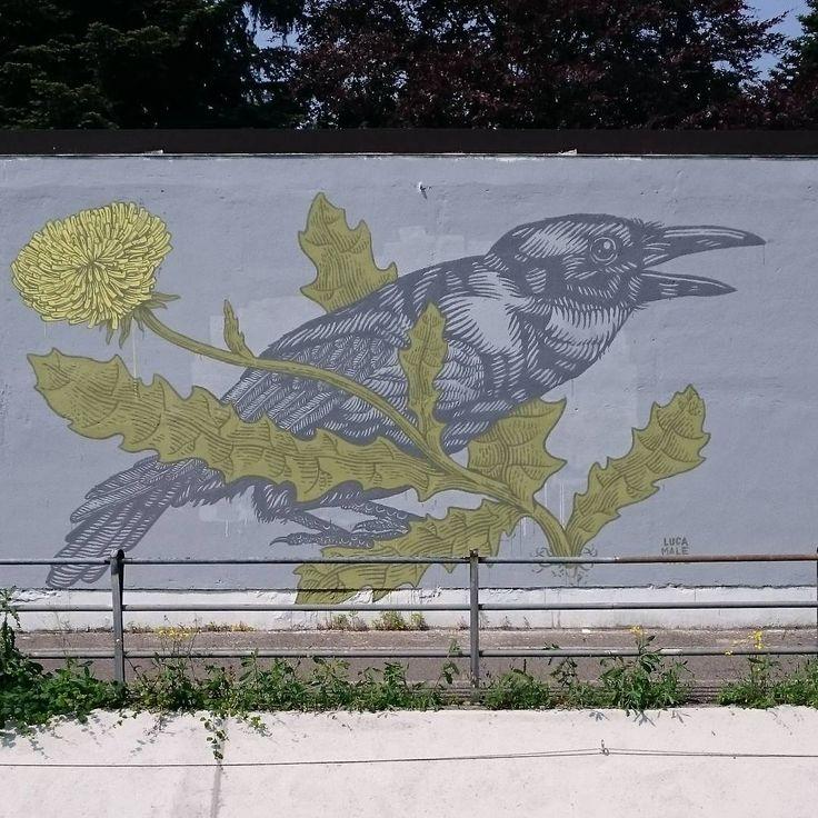 Lucamaleonte - Italian Street Artist - Monza (IT) - 06/2015 - |\*/| #lucamaleonte #streetart #italy