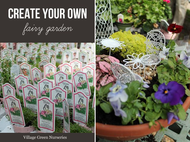 Create a Fairy Garden » Village Green Nurseries