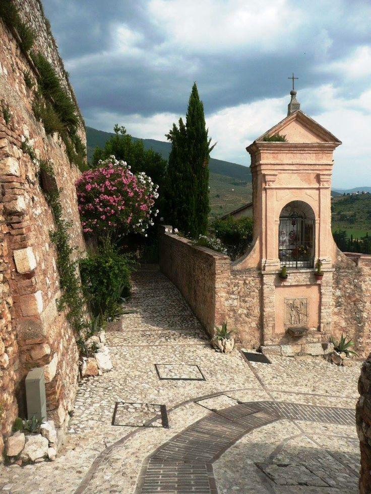 Umbrië wordt ook wel het 'groene hart van Italië' genoemd. Uitgestrekte, glooiende heuvels, wijn- en olijfgaarden, akkers vol tarwe en suikerbieten, eindeloze zonnebloemvelden en zwarte truffels. Umbrië doet niet onder voor zijn bekendere buurman Toscane.