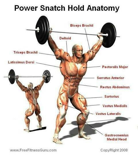 Image result for Barbell Power Snatch / Muscle Snatch