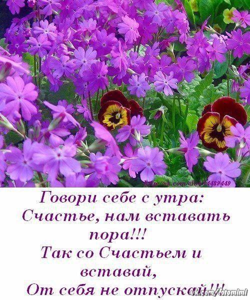 Ольга Стельмащук