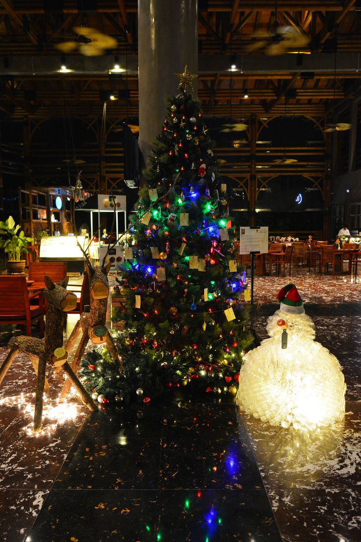 Christmas Wish Tree for Wings Melaka and Environmental Friendly Festive Decorations which made of eco materials.