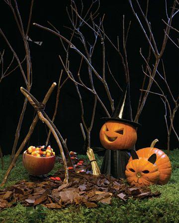 Mini Witch and Cat Pumpkins - Introduction - MarthaStewart.com