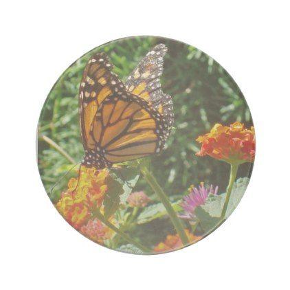 Beautiful Monarch Butterfly Resting on a Flower Sandstone Coaster - beautiful gift idea present diy cyo