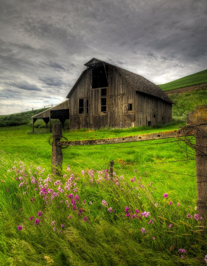 "outdoormagic: ""Palouse Barn by Frank Kehren """