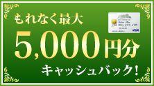 三井住友VISAカード(デビュープラス)