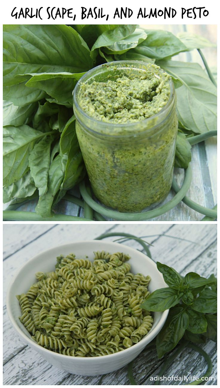 Farmer's Market Delight: Garlic Scape, Basil and Almond Pesto