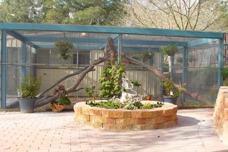 As 25 melhores ideias de outdoor cat kennel no pinterest for Mobilia zoo