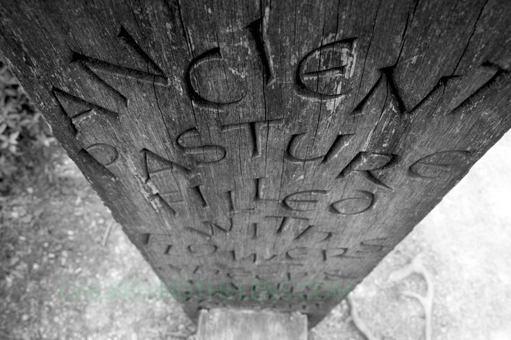 """On the walk along Aysgarth Falls in Yorkshire UK, you will find carvings and scriptures. This is a seat and the carving reads """"Ancient pasture filled with flowers, sheep & cattle enrich the soil"""". I loved the quote and wanted to take the shot from a slightly different angle."""