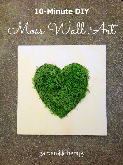 This moss heart is a green art piece that can be made quickly and requires no maintenance!
