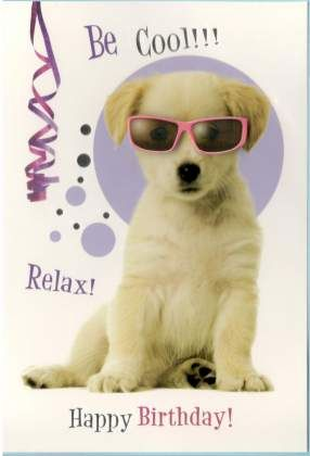 Be Cool!! Relax ! Happy birthday! #grappige verjaardagskaart #verjaardagskaart met honden #verjaardagskaartje dieren