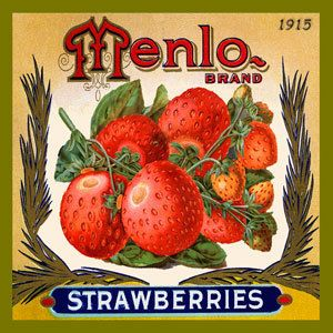Olde America Antiques | Quilt Blocks | National Parks | Bozeman Montana : Vintage Canning Labels Hot Pads - Menlo Strawberries