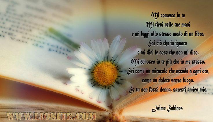 Jaime Sabines - Mi conosco in te ..  Splendide parole da un poeta che mi ha preso il cuore.  Condividetelo per fare che molti altri lo possano conoscere.  ●☆● ☆● ☆● ☆●  #JaimeSabines, #poesia, #amore, #amico, #libro, #conoscere, #immaginiparlanti, #fotografieparlanti, #graphTag, #visualTag, #liosite, #perledacondividere, #citazionifotografiche,