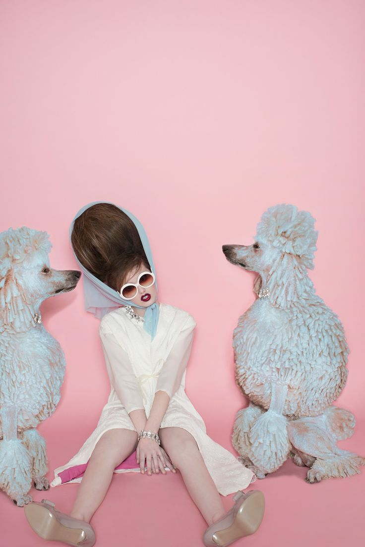 Matthew Gallagher Spring 2014 ~ Pups and Bouffants~
