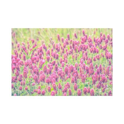 Purple Red Clover Field Nature Wrapped Canvas - floral style flower flowers stylish diy personalize