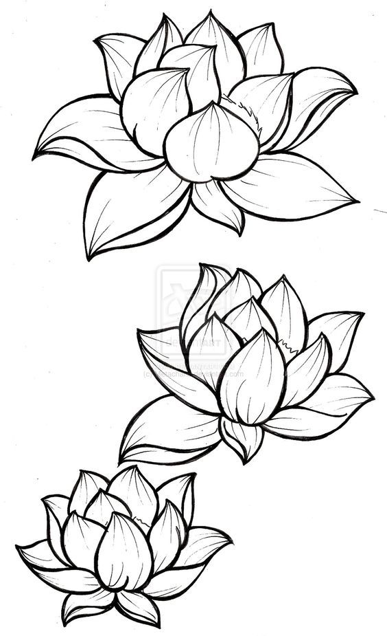 Lotus Blossom Tattoo by ~Metacharis on deviantART: