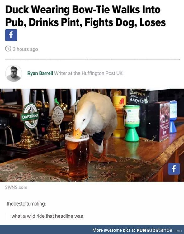 Me as a duck