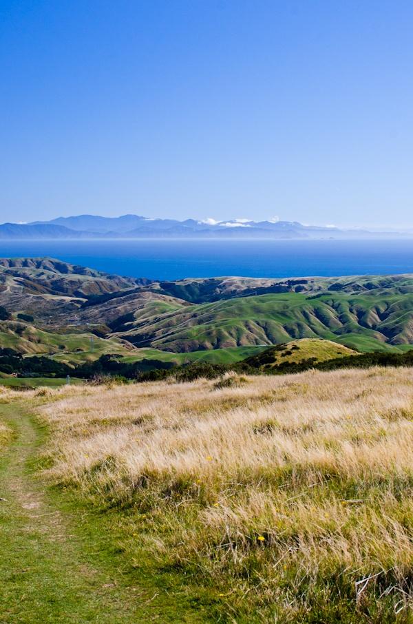 From Mount Kaukau, Tarikaka - Wellington, North Island..with views over towards South Island, New Zealand