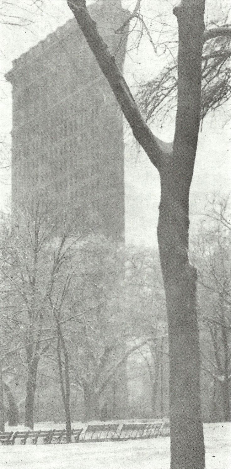 The Flat Iron Building (1903)