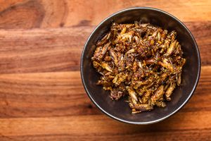 """Lime & Chile Cricket Snacks  A traditional snack in Mexico, and we can see why. This recipe was a hit during our insect recipe testing day, winning over skeptics, who made comments like, """"this isn't 'good for bugs,' it's just good for snacks."""""""