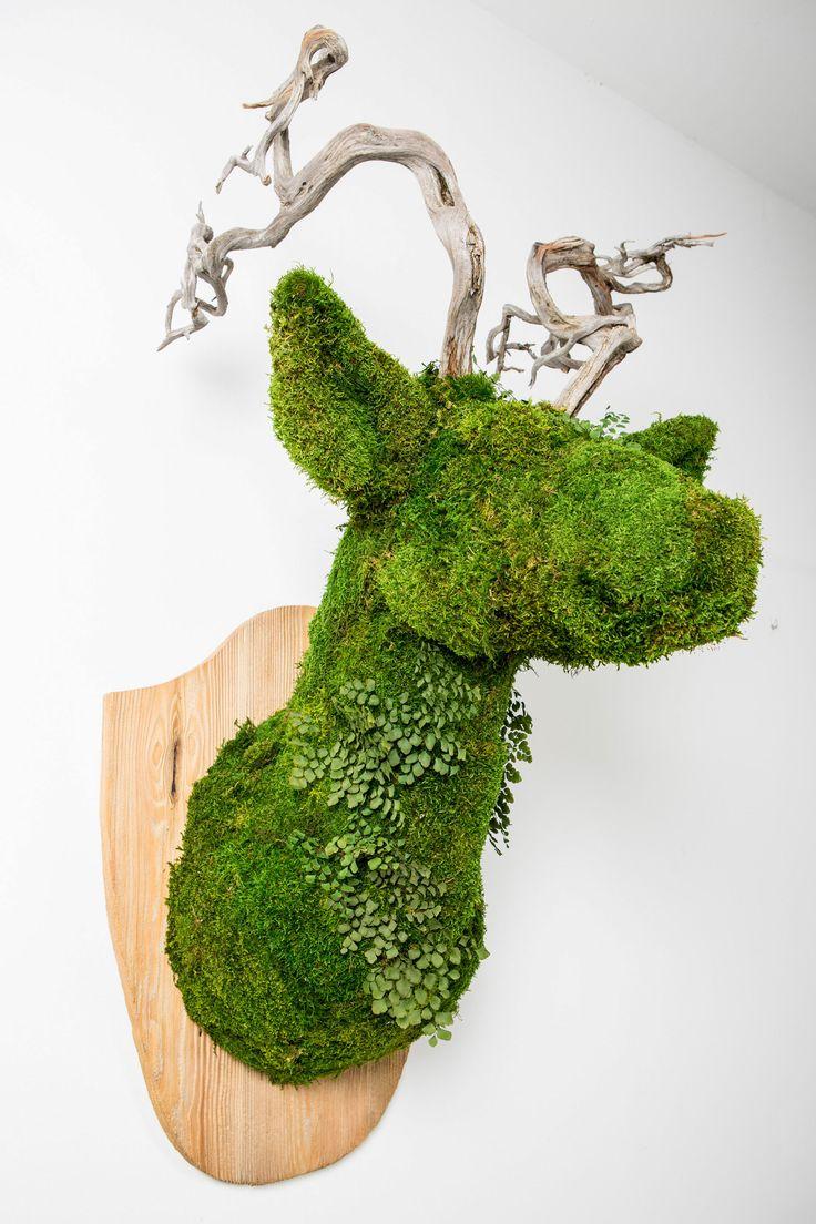 deer/moss | greenarea  Ciervo decoración natural para pared, hecha en liquen preservado. #animaldecor #escultura #animalhead #cabezadeanimal #animal #homedecor #naturaldecor #ciervo #deerhead #deer