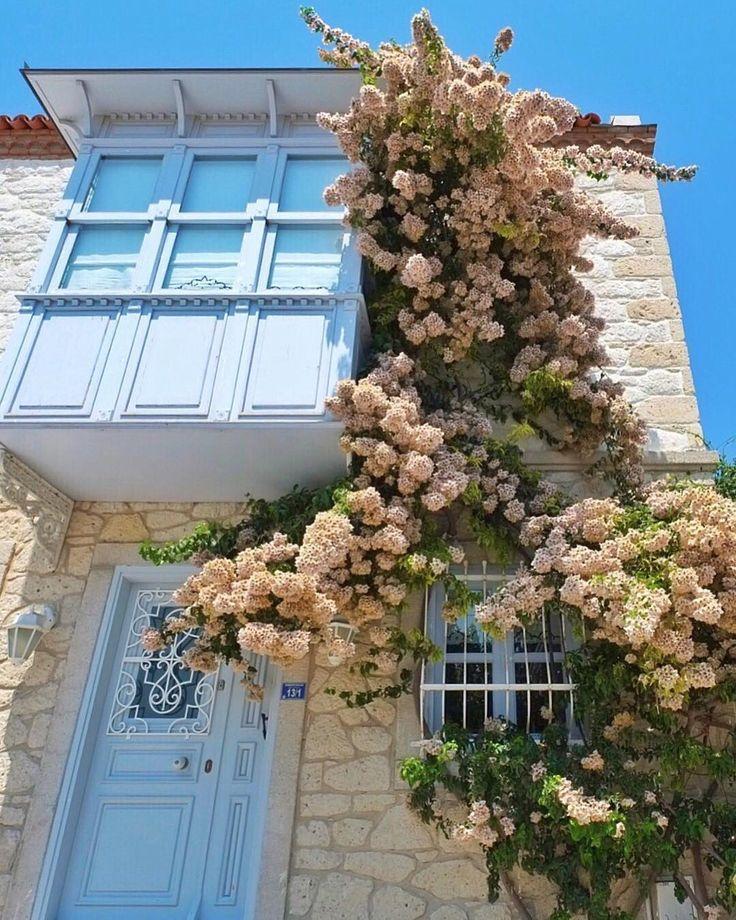 Cute door,Alacati....by ellchintya   #Alacati #turkey