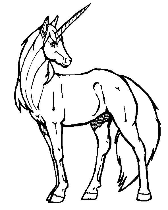 Tegninger til Farvelægning Fantasy 33