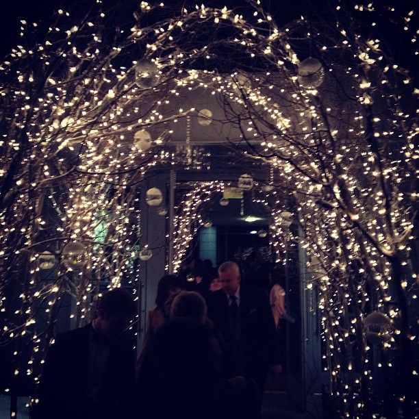 fairy lights wedding arch, love this. Want it, but dont know how...