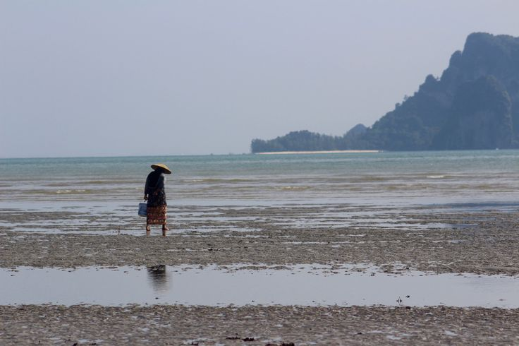 https://flic.kr/p/FgGnP2 | Looking for | Krabi, THA