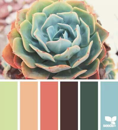I love these colors for our living room. Brown furniture with light green walls and blue and pink accents!