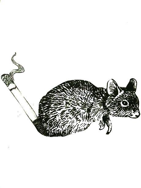 Fusión de cigarro + Rata, representando la CONTAMINACIÓN