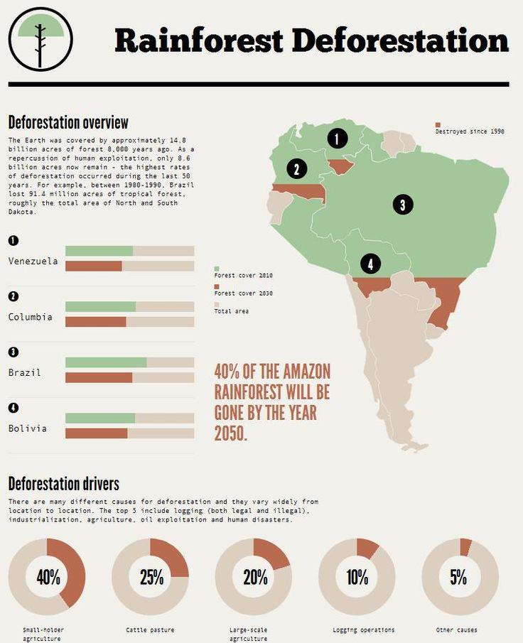the destruction of rainforests essay Destruction of the rainforest essays: over 180,000 destruction of the rainforest essays, destruction of the rainforest term papers, destruction of the rainforest.