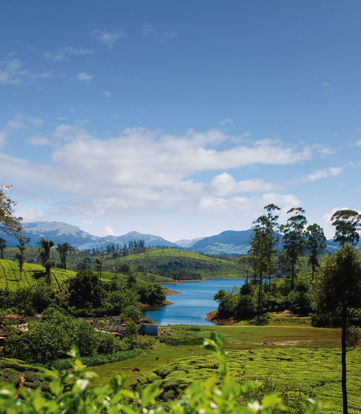 Discover Kerala, Karnataka and Tamil Nadu on a road trip through the misty trails of South India
