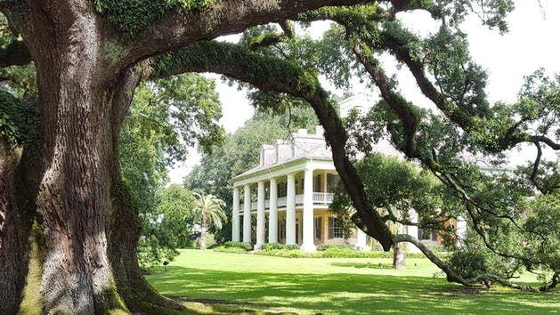 8f69e62aa43813796c9f2e84f39f3ec4 - Houmas House Plantation And Gardens Louisiana