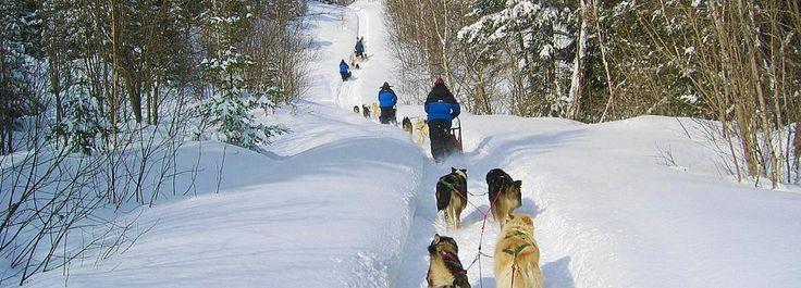 Motoslitta, slitte trainate da cani e racchette da neve per un divertimento assicurato nella natura incontaminata del Canada.