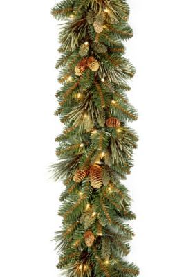 National Tree Company 9-Ft. X 10-Ft. Carolina Pine Garland With Led Lights - Green - One Size